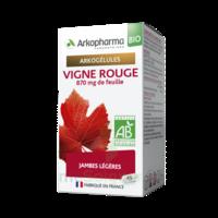 Arkogélules Vigne Rouge Bio Gélules Fl/45 à LA ROCHE SUR YON