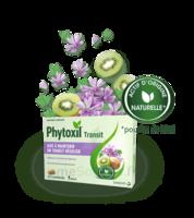 Phytoxil Transit Comprimés B/20 à LA ROCHE SUR YON