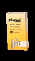 Babyhaler, Bt 2 à LA ROCHE SUR YON