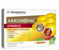 Arkoroyal Dynergie Ginseng Gelée Royale Propolis Solution Buvable 20 Ampoules/10ml à LA ROCHE SUR YON