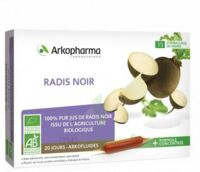 Arkofluide Bio Ultraextract Radis Noir Solution Buvable 20 Ampoules/10ml à LA ROCHE SUR YON