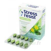 Stress Resist Comprimés Stress & Fatigue B/30 à LA ROCHE SUR YON