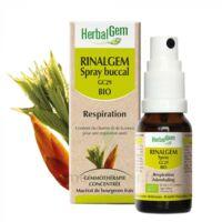 Rinalgem Respiration Spray Buccal Gc29 Bio Spray/15ml à LA ROCHE SUR YON