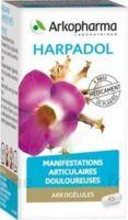 Arkogelules Harpagophyton Gélules Fl/150 à LA ROCHE SUR YON