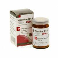 Vitamine B12 Gerda 250 Microgrammes, Comprimé Sécable à LA ROCHE SUR YON
