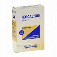 Fixical 500 Mg, Comprimé à Croquer Ou à Sucer à LA ROCHE SUR YON