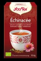 Yogi Tea Echinacee à LA ROCHE SUR YON