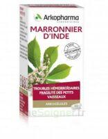 Arkogelules Marronnier D'inde Gélules Fl/45 à LA ROCHE SUR YON