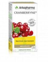 Arkogélules Cranberryne Gélules Fl/45 à LA ROCHE SUR YON