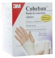 Coheban, Blanc 3 M X 7 Cm à LA ROCHE SUR YON