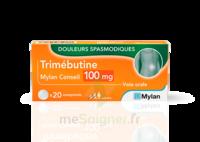 Trimebutine Mylan Conseil 100 Mg, Comprimé à LA ROCHE SUR YON