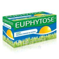 Euphytose Comprimés Enrobés B/120 à LA ROCHE SUR YON