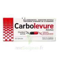 Carbolevure Gélules Adulte Plq/30 à LA ROCHE SUR YON