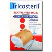 Tricosteril Extensible, 1 M X 6 Cm  à LA ROCHE SUR YON