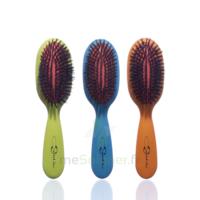 Cartel Brosse Cheveux Pneumatique Sanglier Médium à LA ROCHE SUR YON