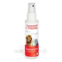 Clément Thékan Caniderma Solution Externe Cicatrisant Spray/125ml à LA ROCHE SUR YON