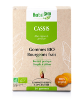 Herbalgem Gomme Cassis Bio B/24 à LA ROCHE SUR YON