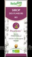 Herbalgem Sirop Bio Des Fumeurs 150ml à LA ROCHE SUR YON