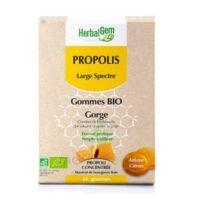 Herbalgem Propolis Large Spectre Gomme Bio B/24 à LA ROCHE SUR YON