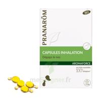 Aromaforce Caps Inhalation Bio B/15 à LA ROCHE SUR YON
