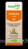 Herbalgem Energem Solution Buvable Bio Fl Cpte-gttes/30ml à LA ROCHE SUR YON