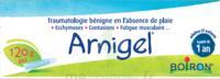 Boiron Arnigel Gel T/120g à LA ROCHE SUR YON