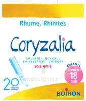 Boiron Coryzalia Solution Buvable Unidose B/20 à LA ROCHE SUR YON