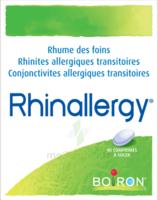 Boiron Rhinallergy Comprimés B/40 à LA ROCHE SUR YON