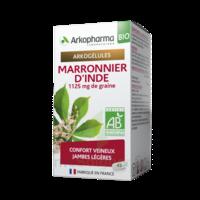 Arkogélules Marronnier D'inde Bio Gélules Fl/45 à LA ROCHE SUR YON