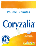 Boiron Coryzalia Comprimés Orodispersibles à LA ROCHE SUR YON
