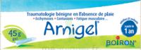 Boiron Arnigel Gel T/45g à LA ROCHE SUR YON