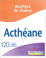 Boiron Acthéane Comprimés B/120 à LA ROCHE SUR YON